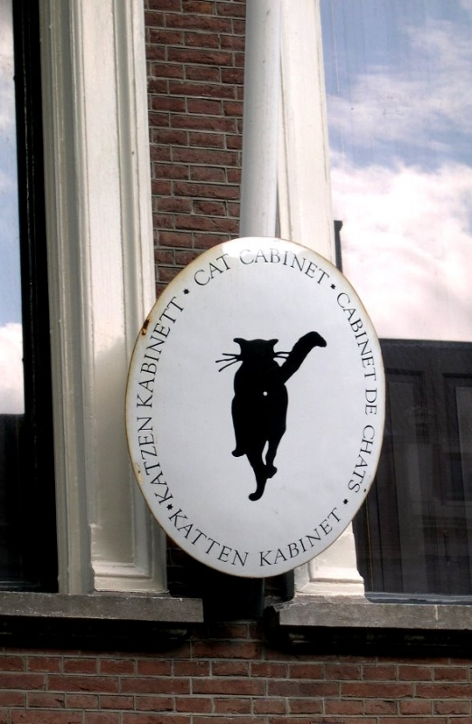 Cat Hotel Amsterdam