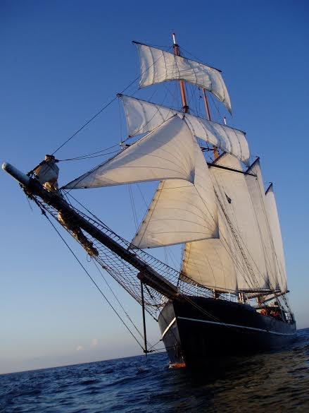 Sail Amsterdam 2020 Amsterdam Info