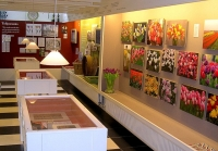 The Tulip Museum Displays