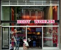 Body Worlds Location