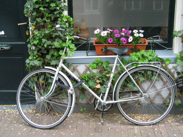 Bike with Flowers Amsterdam